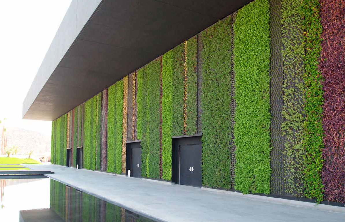 Muros verdes arcus global for Muro verde artificial