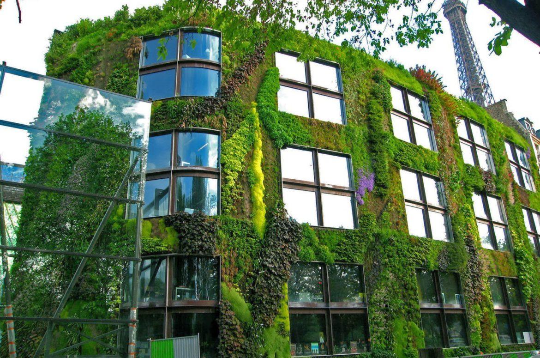 Ventajas de una fachada verde o  jardín vertical